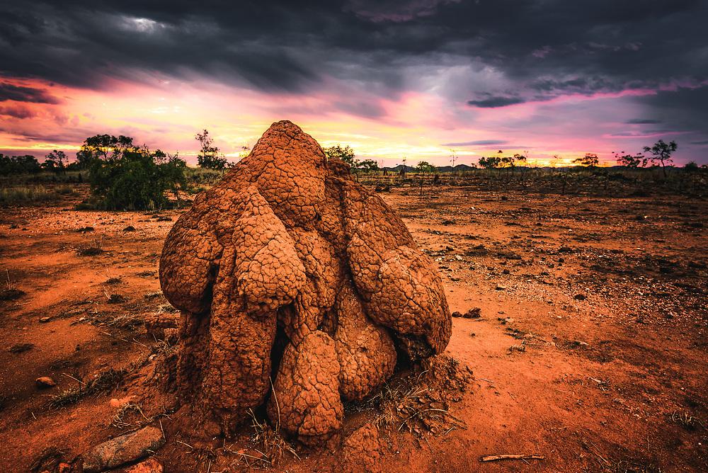 Termite mound at Kimberley, Western Australia