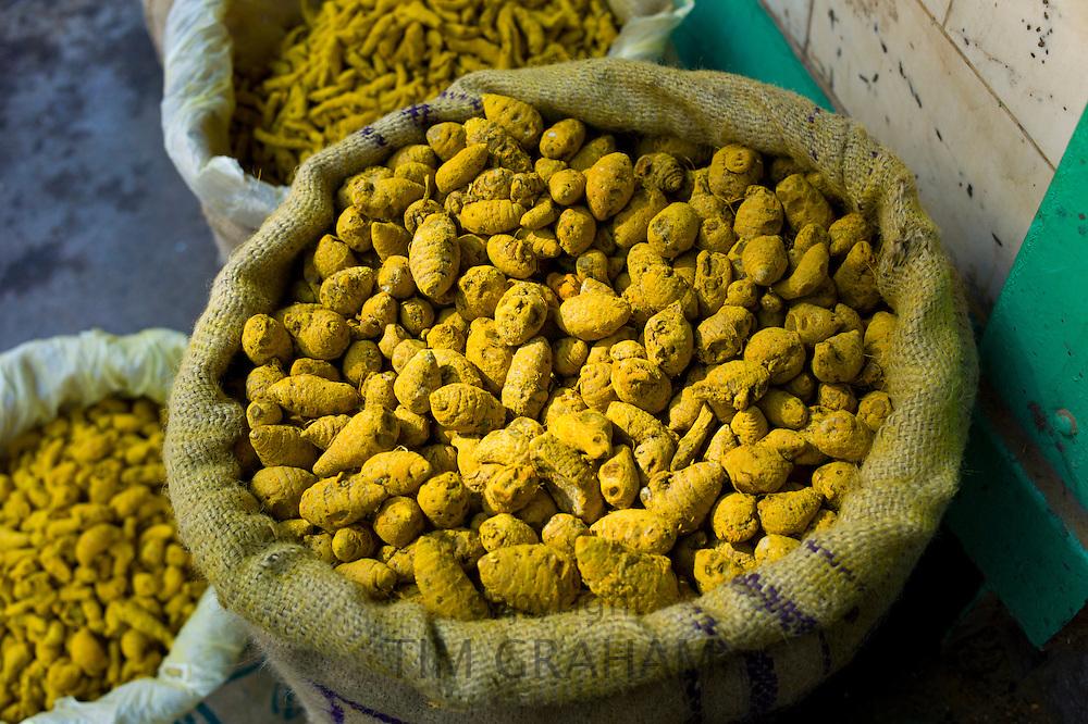 Yellow turmeric on sale at Khari Baoli spice and dried foods market, Old Delhi, India