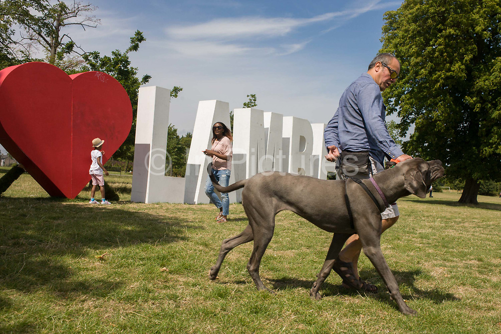Large Great Dane dog owner with giant letters spelling Lambeth, the largest in area, of London boroughs. The pet stalks across the grass in Brockwell Park in Herne Hill, SE24. The letters are a remnant of the Lambeth Country Show, an annual iner-city weekend festival featuring local businesses and entertainment, it celebrates the successes of Lambeth's achivevements for its population of approximately 303,000.