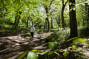 Woman walking up the path and through the green trees and leaves in the Jersey countryside of Egypt Woods.