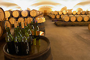 The old style vaulted barrel aging cellar with barriques pieces with maturing wine. Bottles with tasting samples standing on a barrel and wine tasting glasses with barrel samples, Maison Louis Jadot, Beaune Côte Cote d Or Bourgogne Burgundy Burgundian France French Europe European