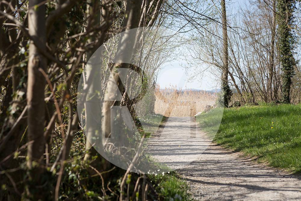 SCHWEIZ - TENNWIL - Wanderweg ohne Menschen - 14. April 2015 © Raphael Hünerfauth - http://huenerfauth.ch