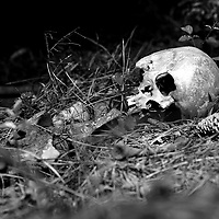 """Every work day, in a setting where a narrow country road dead-ends into eternity, Dr Joan Bytheway studies the dead. With the practiced eye of an anthropologist who has plumbed the horrors of Iraqi mass graves, the Sam Houston State University professor minutely records the steps human bodies take in becoming skeletons. Then, with the help of her Southeast Texas Applied Forensic Science Facility students, she sorts the bones by gender, ethnicity and, sometimes, cause of death. Then she packs them away for future use by scholars and law enforcement authorities. The center, one of four in the United States and possibly the world, walks a fine line between scientific inquiry and society's skittishness about death. Its work entails grisly sights and stomach-turning odors. """"I am coolly analytical,"""" Bytheway says. """"I never let myself go wandering into what-ifs and things like that. I look at facts.""""<br /> Since its 2008 creation, Bytheway's center has played key roles in solving Houston-area crimes. Fort Bend County Sheriff's Detective Jeff Martin says Bytheway and her staff have helped determine whether bones found at crime scenes are those of humans or animals, a task virtually impossible to the untrained eye."""