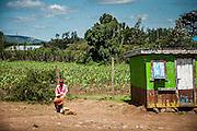 Kenya, Kisumu-Siaya Road, 2011
