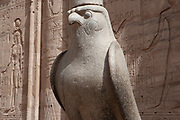 Horus Statue at the entrance to the Horus Temple, Edfu Courtyard
