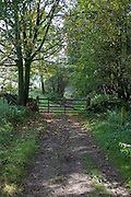 Ancient Bronze Age path and former drovers route from Scotland to London, at Scotch Corner on the North Yorkshire moors.