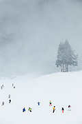 Scenic winter landscape with people skiing, Nagano, Japan