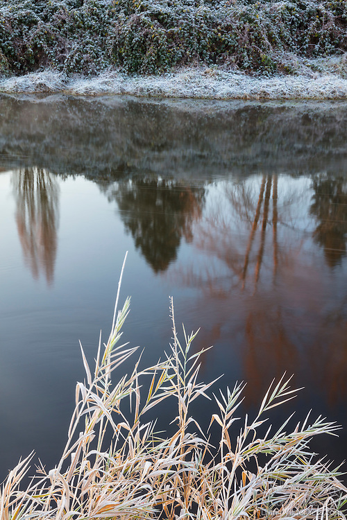 Frost lines the banks of the Sammamish River as it flows through Woodinville, Washington.