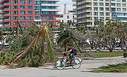 A man rides a bike next a fallen trees and palm trees at South Pointe Park on Miami Beach in the Hurricane Irma aftermath on Monday, September 11, 2017 in Miami. Photo by David Santiago/Miami Herald/TNS/ABACAPRESS.COM