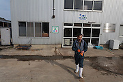 An evacuee  farmer from the nuclear exclusion zone works at the Minero Farm near Koriyama, Fukushima, Japan Sunday November 22nd 2015 The Minero Farm is run by the NPO, Fukushima Agricultural Revitalizing Network (FAR-Net) and was intially sponsored by Danone. It aims to revitalise dairy farming in Fukushima through educational and training programmes.