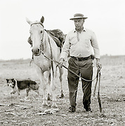 Gaucho with this horse, Pampas District, Argentinca