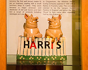 Harris of Calne pork products display, with permission of Chippenham museum, Wiltshire, England, UK