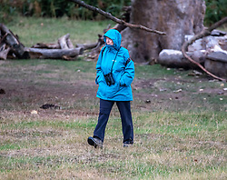 © Licensed to London News Pictures. 23/09/2020. London, UK. A Walker in Richmond Park braves the wind and rain as the warm weather comes to a sudden halt as temperatures plunge by 10c. The unsettled outlook is set to continue with lower temperatures and more rain this week as Autumn finally arrives. The Prime Minister, in a televised appearance last night announced to the Nation further tougher Covid restrictions as the UK moves closer to more seasonal weather. Photo credit: Alex Lentati/LNP