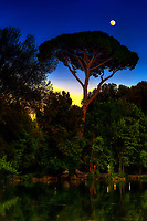 """""""Sunset moon shining over pine tree at Villa Borghese – Rome""""…<br /> <br /> I stumbled into photography just before graduation at the U of TN while volunteering at a local hospital where I was influenced to attend Brooks Institute.  The instructors preached the technical aspects of photography, and upon graduation…we could implement our own artistic vision.  As a commercial photographer since graduation, I have had little time to express my artistic vision…until I went to Italy for the first time, where I discovered my true love and passion!  I consider myself a """"contemplative"""" photographer, and as such, I have a three-part process to achieve my final presentation for each image: the discovery, how I perceive the image creation, and how I hope others will perceive the image.  This artistic pursuit, I imagine, is similar to Michelangelo viewing a piece of marble for the first time.  Villa Borghese in Roma is a famous Gardens and Museum begun in the early 17th century, highlighted by a """"Temple of Aesculapius"""" at the garden lake.  Surrounding this small lake is a three-foot iron fence, which I now affectionately call """"Il lago di dolore"""", or Lake Pain!  I tried to cross this iron fence with camera in hand and a 20lb bag on my shoulder…needless to say, it did not go well!  Despite the intense pain, I continued to take 60 images around the lake, and upon return home, I stubbornly refused to look at them until recently.  My disdain for Lake Pain kept me from discovering the true artistic vision I first saw when I began creating these images. I finally gave into the contempt I had for the Lake and began working on several images.  Perhaps, the viewer will perceive the great pain it took to finally engender a feeling of solace and peace in the true vision, and find that suffering eventually brought forth eminent beauty.  As for this photographer, Il lago di dolore will be a constant reminder that the creation of great art sometimes endures great pain!"""