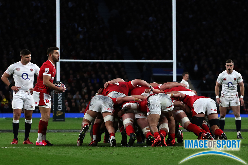 Rhys Webb of Wales prepares to put the ball into a scrum during the Guinness Six Nations between England and Wales at Twickenham Stadium, Saturday, March 7, 2020, in London, United Kingdom. (Mitchell Gunn-ESPA-Images/Image of Sport)