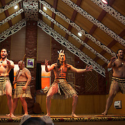 A Maori Cultural Performances at Te Puia, Maori Arts and Crafts Institute, Te Whakarewarewa Thermal Valley, Rotorua, New Zealand..Te Puia is the premier Maori cultural centre in New Zealand, a place of  steaming vents, boiling mud pools and spectacular geysers. Maori culture also includes the National Carving and Weaving Schools while the Maori Cultural performance include Meeting House greeting, Maori traditional dance and the famous Haka. Rotorua, New Zealand, 8th December 2010 Photo Tim Clayton