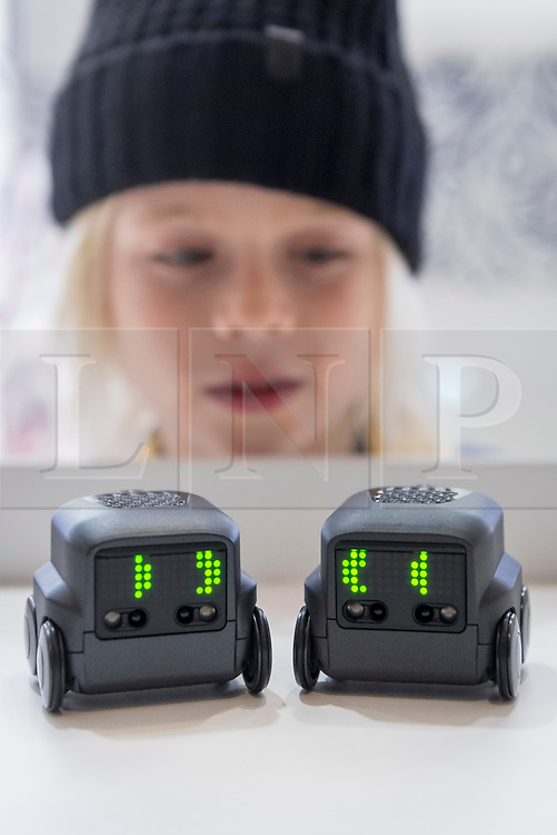 "© Licensed to London News Pictures. 14/11/2018. LONDON, UK. Harrison, aged 8, plays with Boxer the robot, by Spin Master Toys.  Preview of ""DreamToys"", the official toys and games Christmas Preview, held at St Mary's church in Marylebone.  Recognised as the countdown to Christmas, the Toy Retailer's Association, an independent panel of leading UK toy retailers, have selected the definitive and most authoritative list of what toys will be the hottest property this Christmas. [Child models provided by show organisers, permission obtained to be photographed].  Photo credit: Stephen Chung/LNP"