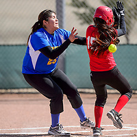 032615       Cable Hoover<br /> <br /> The throw to Zuni Thunderbird Iyana  Owaleon-Sepo (25) strikes St. Michael Cardinal Deandra James (15) as James tags home Thursday at Tohatchi High School.