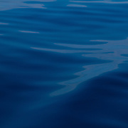 A wave ripples over a bright blue ocean, seen from a sailboat.