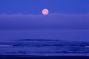 Image of a full moonset on the coast at Redwoods National Park, California, America west by Randy Wells