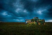 John Deere Forage Harvester working in cornfield.