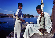 Nubian boys tout to sell felucca trips along the Nile and to Elephantine Island, Aswan, Egypt