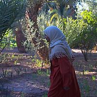 Africa, Morocco, Skoura. Profile of Moroccan woman near Skoura.
