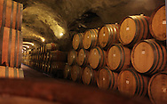 Barrels of wine in a winery in New Zealand.  Photograph by Dennis Brack