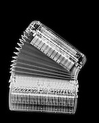 X-ray of an Accordion on black background