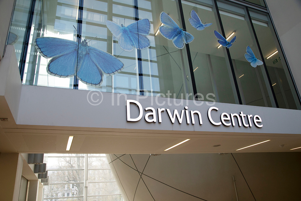 The Darwin Centre at the Natural History Museum in London, England, United Kingdom. The museum exhibits a vast range of specimens from various segments of natural history. The museum is home to life and earth science specimens comprising some 80 million items within five main collections: botany, entomology, mineralogy, paleontology and zoology. The museum is a centre of research specialising in taxonomy, identification and conservation.