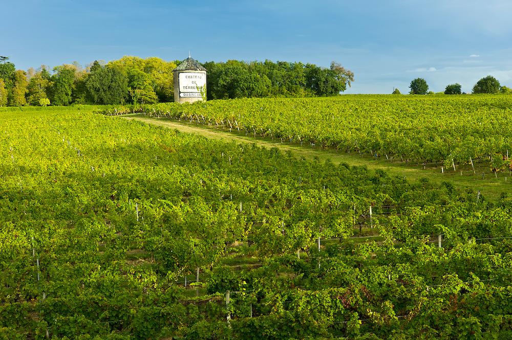 Chateau de Terrefort Quancard vineyard, Bordeaux, France