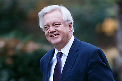 © Licensed to London News Pictures. 23/11/2016. London, UK. Secretary of State for Exiting the European Union DAVID DAVIS attends a cabinet meeting in Downing Street before the autumn statement announment on Wednesday, 23 November 2016. Photo credit: Tolga Akmen/LNP