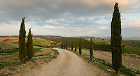 The road to the church, San Maria di Vitalieta, in the valley of D'Orcia, is lined with cypress trees.