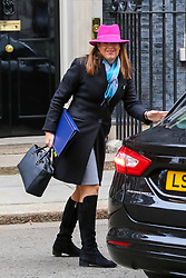 © Licensed to London News Pictures. 15/01/2019. London, UK. Caroline Nokes - Minister of State for Immigration arrives in Downing Street for the weekly Cabinet meeting. Later today, after five days of debate in the House of Commons, MPs will vote on the British Prime Minister Theresa May's EU Withdrawal deal. Photo credit: Dinendra Haria/LNP