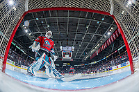 KELOWNA, BC - NOVEMBER 30:  Roman Basran #30 of the Kelowna Rockets scuffs the crease at the start of second period against the Prince George Cougars at Prospera Place on November 30, 2019 in Kelowna, Canada. (Photo by Marissa Baecker/Shoot the Breeze)