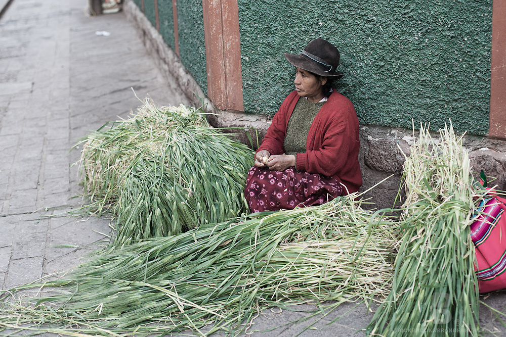 A Peruvian Andes women sells grass feed on the street at the Sunday market in Pisac, Peru.
