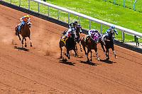 Horse racing, Keeneland Racecourse, Lexington, Kentucky USA.