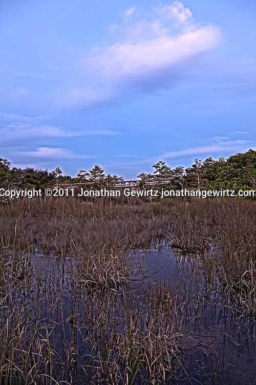 The Florida Everglades during rainy season, just before sunrise,at the Pa-hay-okee Overlook walkway. WATERMARKS WILL NOT APPEAR ON PRINTS OR LICENSED IMAGES.