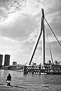 Sitting by the Erasmus Bridge, Rotterdam