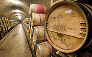 Barrels of estate grown cabernet sauvignon wine in underground caves at famous Chateau Montelena winery in Calistoga, Napa Valley, California