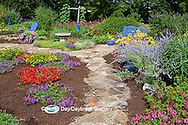 63821-21715 Blue bench, chair, blue pots, bird bath, and stone path in flower garden.  Black-eyed Susans (Rudbeckia hirta) Red Dragon Wing Begonias (Begonia x hybrida)  Zinnias, Homestead Purple Verbena (Verbena canadensis), New Gold Lantana (Lantana camara)  Red Verbena, Butterfly Bushes, zinnias, Raspberry Blast petunias in container, Russian Sage (Perovskia atriplicifolia), Pink Wave Petunias, Red Spread Lantana, Marion Co., IL