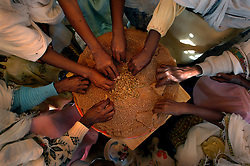 """Tiblits shares the local delicacy called """"Injero"""" with her neighbors after Zaid Tesheme, 31 had her baby baptized with the name Mihreteab inside Coptic St. Mary's chapel in the village of Fithi which means """"justice"""" on the outskirts of  Barentu, Eritrea August 27, 2006. During this ceremony, the donkey that Tiblets received from the womens union """"Hamade"""", helped them prepare for the celebration afterwards."""