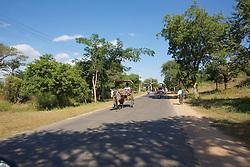 Horse & Buggies On Bagan Road