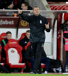 Birmingham City manager Steve Cotterill gestures on the touchline