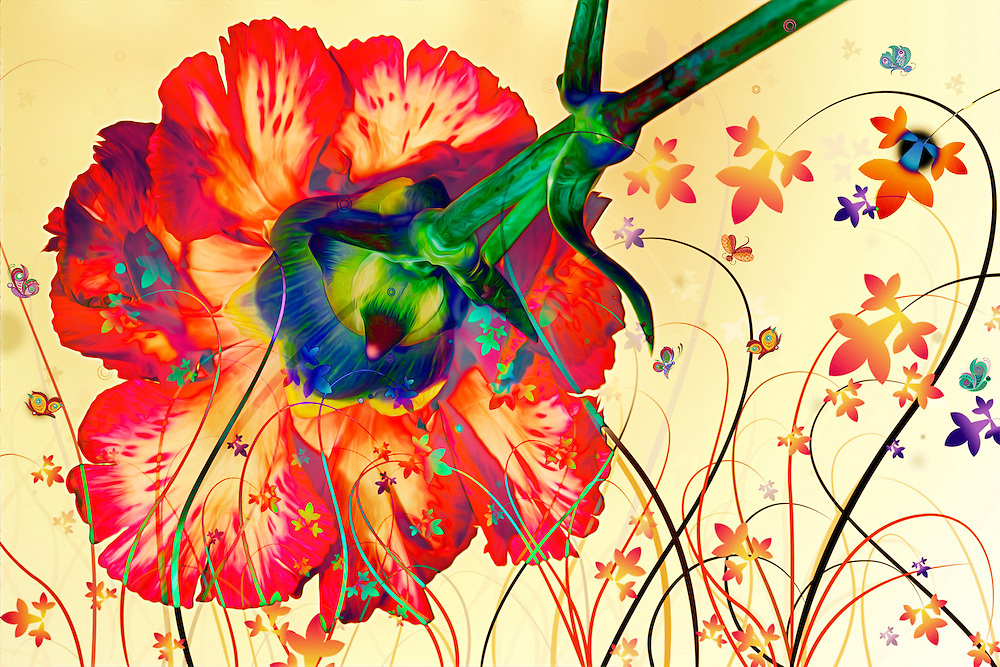 A Trippy Floral Fantasy Splashed By Psychedelic Colors and Lines