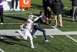Nov 10, 2018; Morgantown, WV, USA; West Virginia Mountaineers wide receiver Marcus Simms (8) catches a pass during the third quarter against the TCU Horned Frogs at Mountaineer Field at Milan Puskar Stadium. Mandatory Credit: Ben Queen-USA TODAY Sports