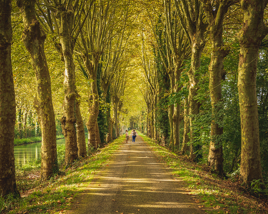 The beautiful paths alongside the Canal des Deux Mers, ideal for walks and cycle rides as well as canalboat cruising. A wonderful cycling route nearly 800km long linking the Atlantic to the Mediterranean.