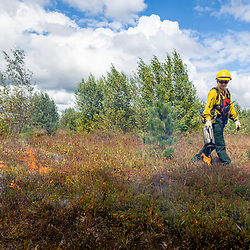 Prescribed burn on the grassland at The Nature Conservancy's Kennebunk Plains Preserve in Kennebunk, Maine.