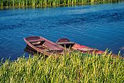 Łodzie rybackie nad rzeką Biebrzą, Polska<br /> Fishing boats on the river Biebrza, Poland