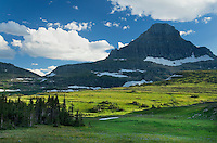 Alpine meadows of logan Pass below Mount Reynolds, Glacier National Park Montana USA